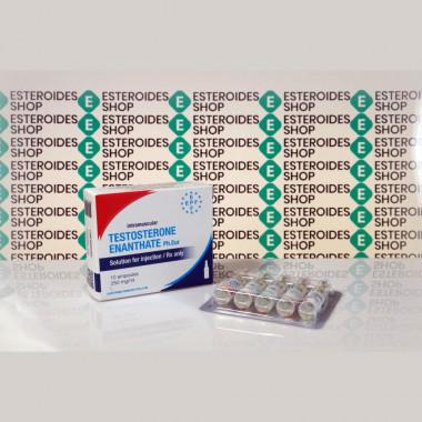 Testosterona Enanthate 250 mg Euro Prime Farmaceuticals | ESC-0268